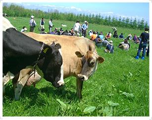 grassfarming_01